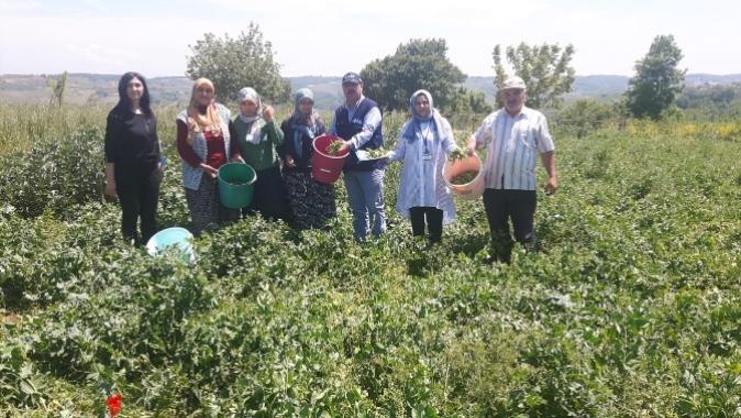 Büyükşehir'den çiftçilere her alanda destek